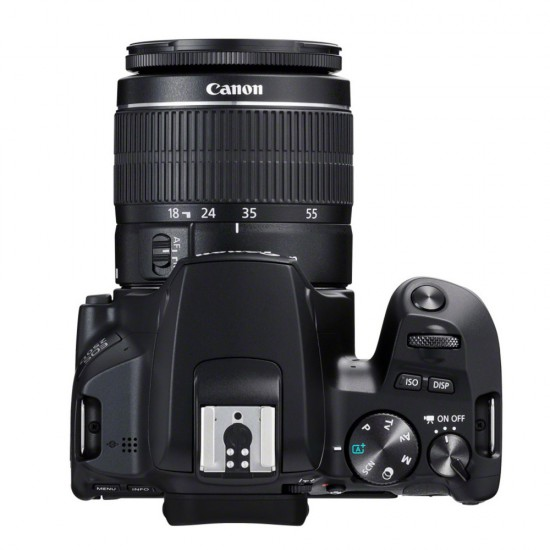 Canon EOS 250D (with EF-S 18-55mm IS STM Lens)